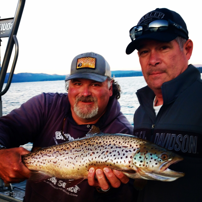 Lake Almanor Brown Trout. www.bigdaddyfishing.com