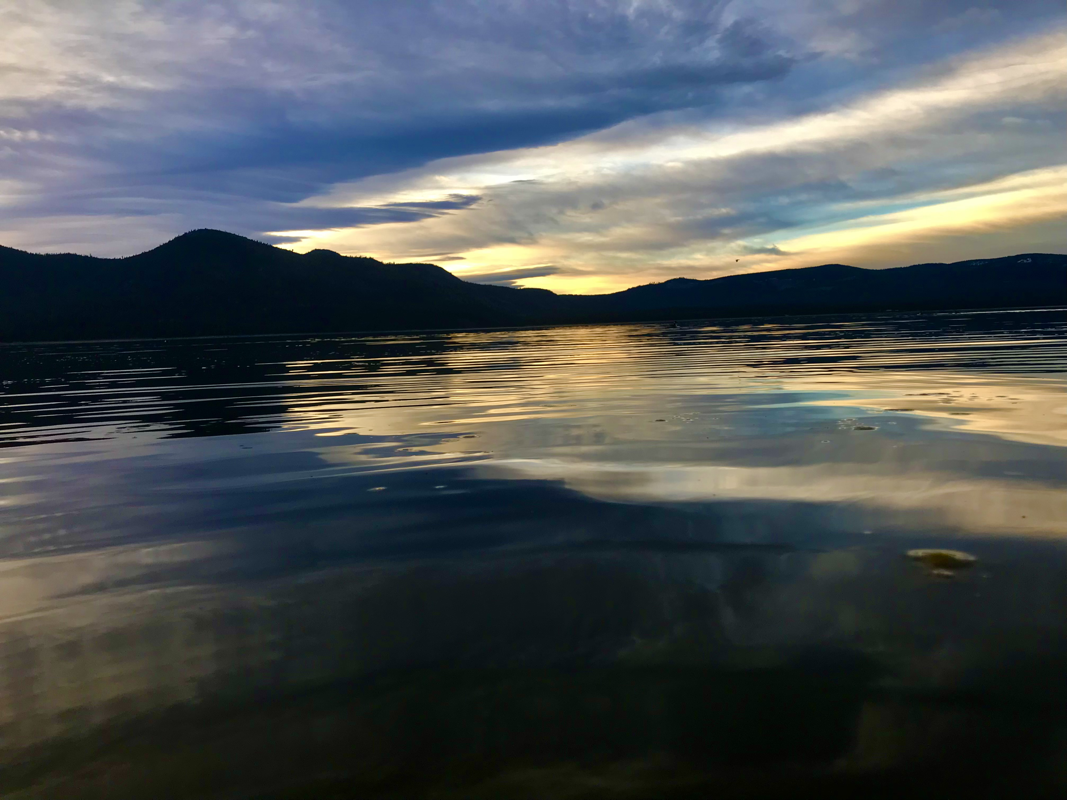 Lake Almanor Brown www.bigdaddyfishing.com